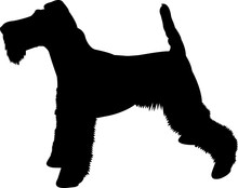Fox Terrier 9 Isolated Vector Silhouette