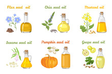 Set Of Vegetable Oils In Glass Bottles Of Different Shapes. Mustard, Sesame, Pumpkin, Chia, Linseed And Grape Seed Oil Isolated On White Background. Vector Illustration Of Food In Cartoon Flat Style.