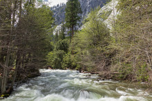 Merced River, Viewed From Mist...