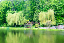 Landscape In City Park With Lake, Getaway For Urbanites