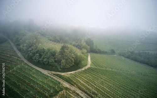 aerial photo of Piedmont vineyards Canvas Print