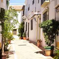 Fototapeta na wymiar Typical Andalucia Spain old village whitewashed houses town street