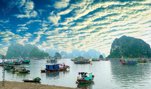 Cat Ba Harbor in Halong Bay, Vietnam with many fishing boats anchored Wallpaper Mural