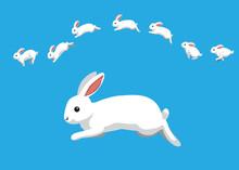 White Rabbit Jumping Motion Animation Sequence Cartoon Vector Illustration