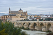 Cordoba in November. Roman Bridge and Mezquita.