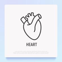 Human Anatomical Heart Thin Line Icon. Modern Vector Illustration Of Human Organ.