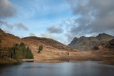 Beautiful vibrant sunrise landscape image of Blea Tarn in UK Lake District with Langdales Range in background - 267226344