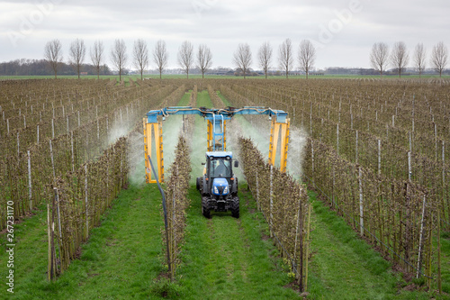 Fotomural ASPEREN, THE NETHERLANDS - March 31, 2019: Modern orchard sprayer spraying insecticide or fungicide on his apple trees