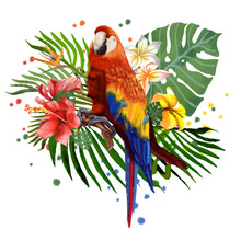 Macaw Parrot. Illustration, Tropical Plants And A Parrot.