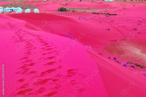 Fotobehang Roze Beautiful sand dunes in the Sahara desert.