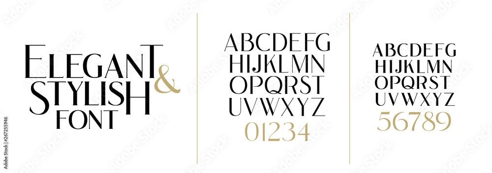 Fototapeta vector illustration. Stylish elegant vector composite font. set of letters english