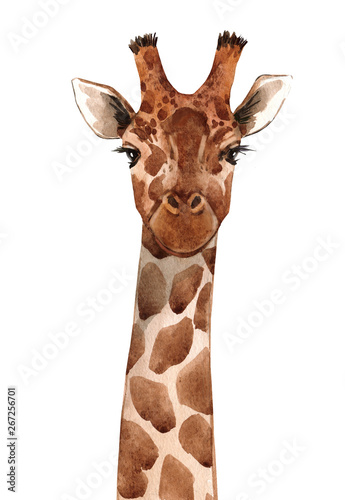 Photo Watercolor giraffe portrait