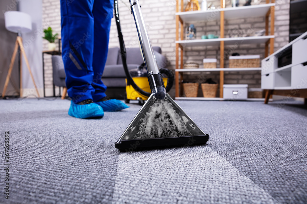 Fototapety, obrazy: Person Cleaning Carpet With Vacuum Cleaner