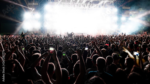Rear view of large group of people having fun on music festival at night.