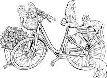 Vintage Bicycle With Cats And ...