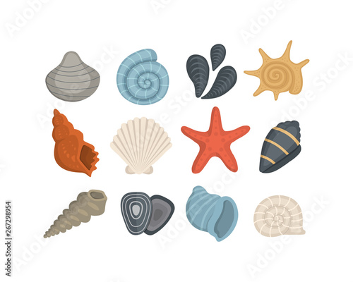 Fotografiet Sea shell vector icons in cartoon style