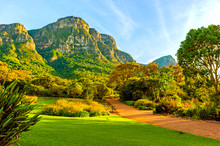 Kirstenbosch National Botanical Garden In Cape Town, South Africa