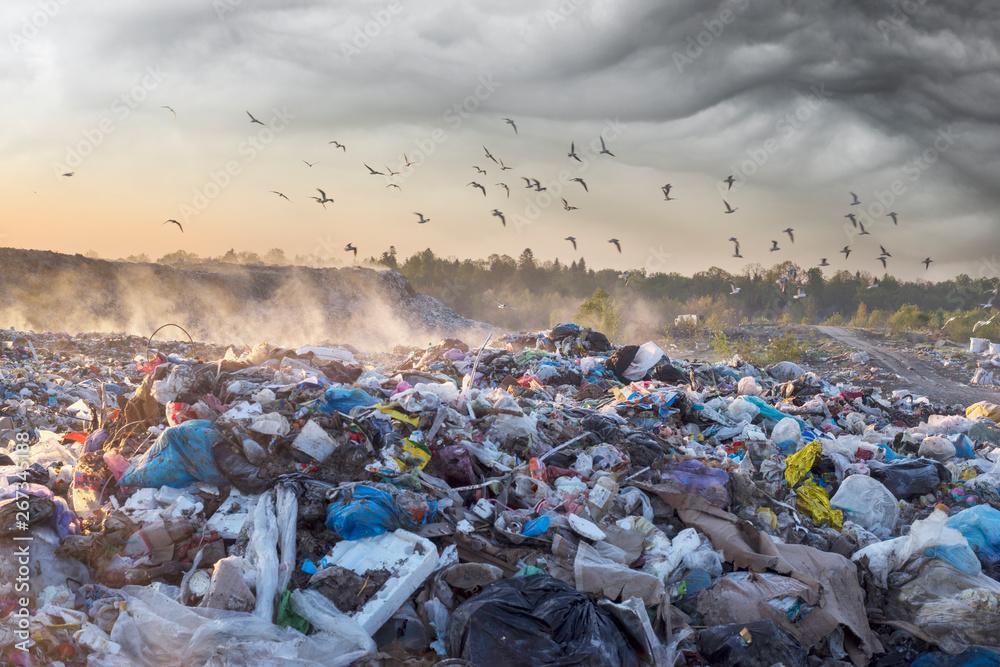 Fototapety, obrazy: Sunrise Sun above the ocean of garbage