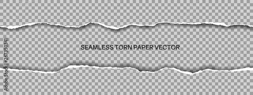 Fototapeta Realistic illustration of wide seamless torn paper with space for text isolated on transparent background, vector obraz