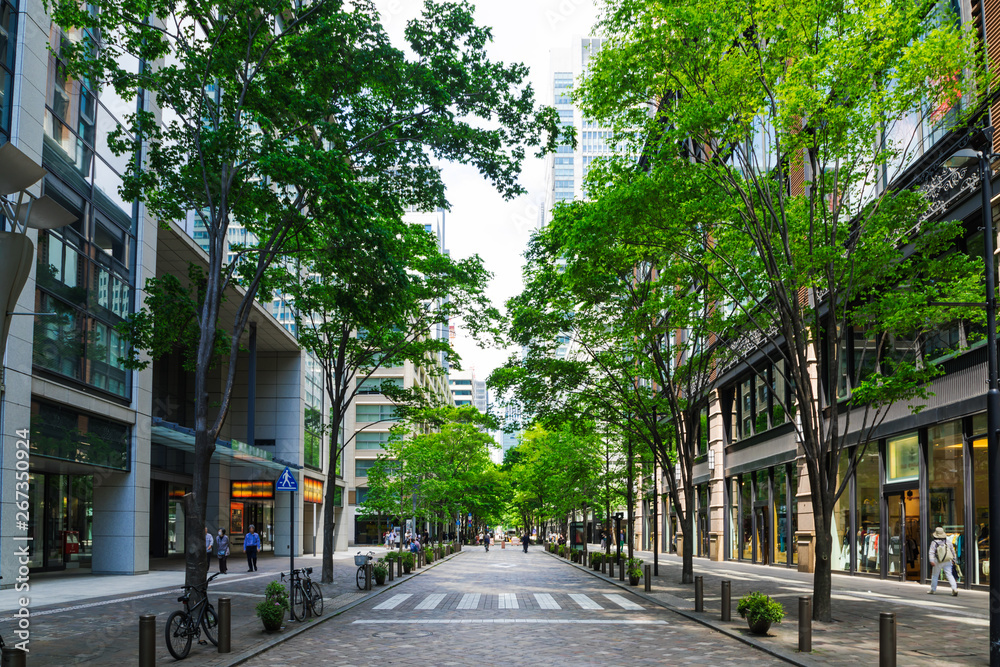 Fototapeta (東京都ー都市風景)丸の内オフィス街の夏5