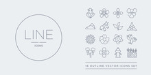 16 Line Vector Icons Set Such ...