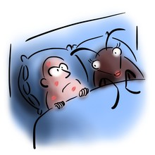 Man Lies In Bed With Bug