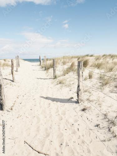 Pathway to the beach Fototapeta