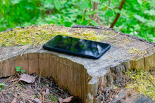 Smartphone Lying On The Nature On An Old Moss Stump Close Up
