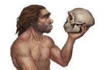 Illustration Of Neanderthal Ma...