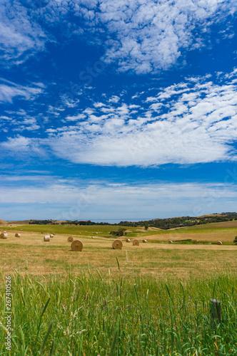 Foto  Picturesque countryside landscape