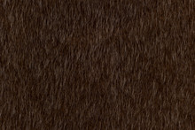 Abstract Dark Brown Animal Hair Texture Background. Close Up Detail Of Artificial Horse Fur Skin. Natural Wildlife Concept