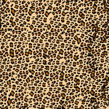 Leopard Pattern. Seamless Vect...