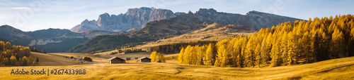 Cadres-photo bureau Miel Alpe di Siusi at sunrise, Dolomites, South Tyrol, Italy