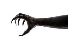 Creepy Monster Claw Isolated O...
