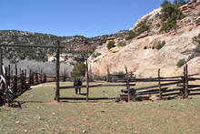 Vintage Split-rail Cattle Corral