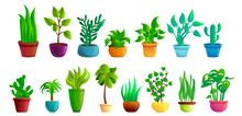 Houseplants Icons Set. Cartoon...