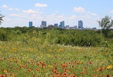 View Of Downtown Fort Worth, T...