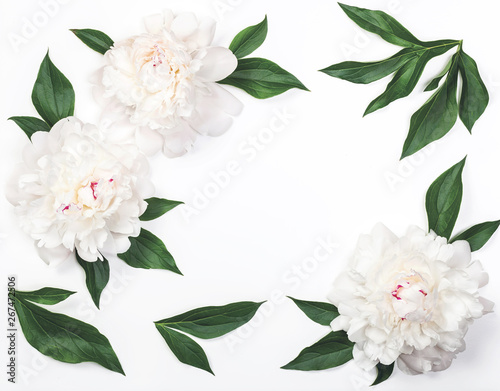 Fototapety, obrazy: Frame of white peony flowers and leaves isolated on white background. Top view. Flat lay.