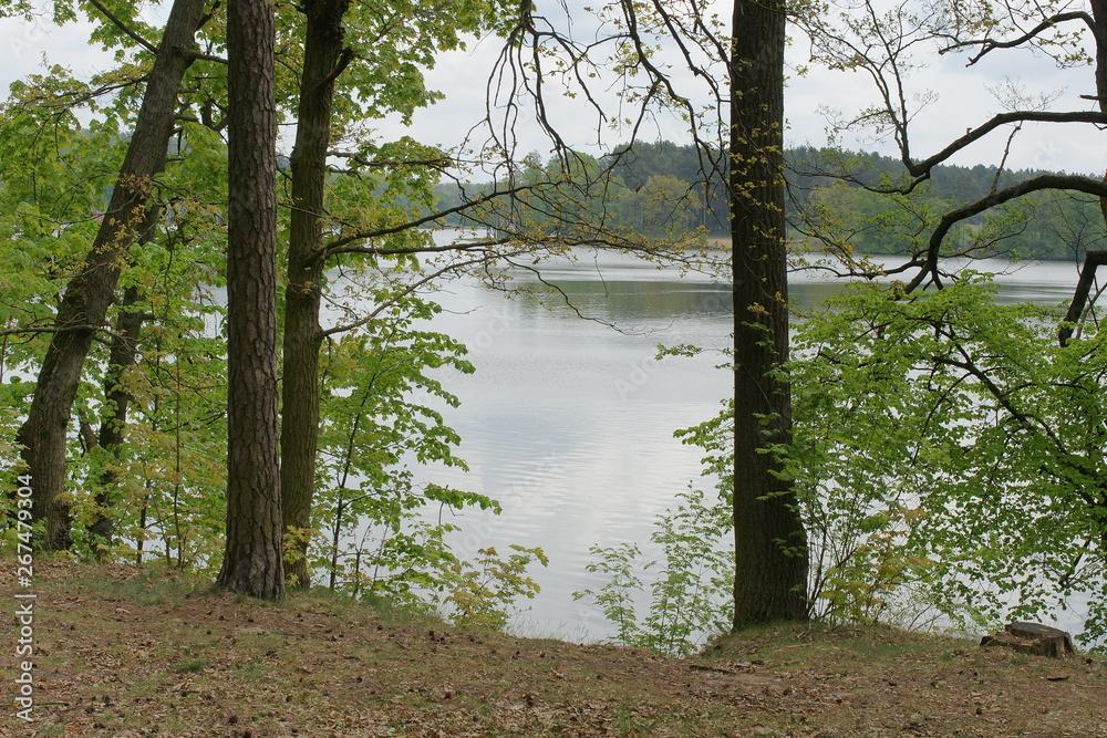 Fototapeta Jezioro Nidzkie