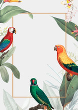 Parrot And Leaves Banner