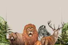 Hand Drawn Wild Animals