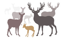 Deer Family Set Collection Silhouette Style.
