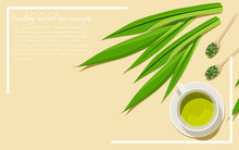 Top View Of A Cup Of Pandan Tea With Dried And Fresh Leaves. Alternative Medicine From Herbs. Flay Lay Design Vector Illustration With Copy Space.
