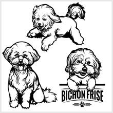 Bichon Frise Dog - Vector Set Isolated Illustration On White Background