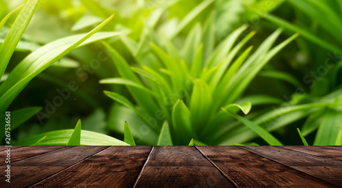 Foto auf AluDibond Lime grun Spring background table. Green floral background, blurred background. Young green leaves, grass. Wooden table, sunlight, rays.