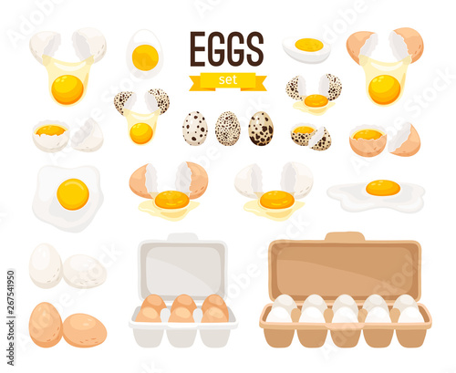 Fresh and boiled eggs Wallpaper Mural