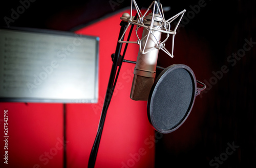Professional microphone recording voice in music studio Wallpaper Mural