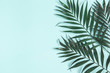 canvas print picture - Palm leaves on pastel blue background. Summer concept. Flat lay, top view, copy space