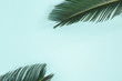 canvas print picture - Summer composition. Palm leaves on pastel blue background. Summer concept. Flat lay, top view, copy space