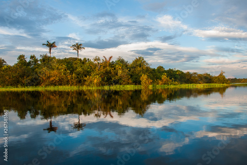 Extraordinary beautiful landscape with views of the Amazon river and the jungle Billede på lærred
